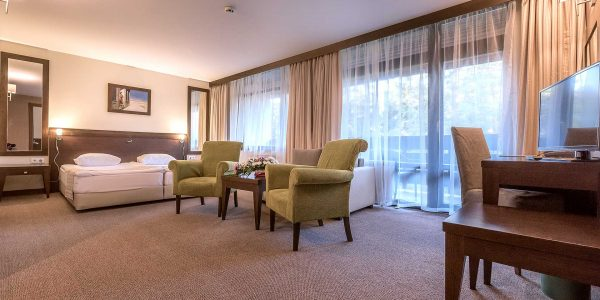 home-borovets-room